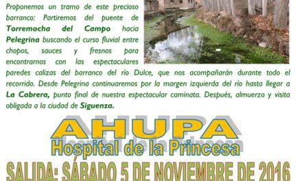 Excursión Senderismo – Otoño en el río dulce – 5 Noviembre